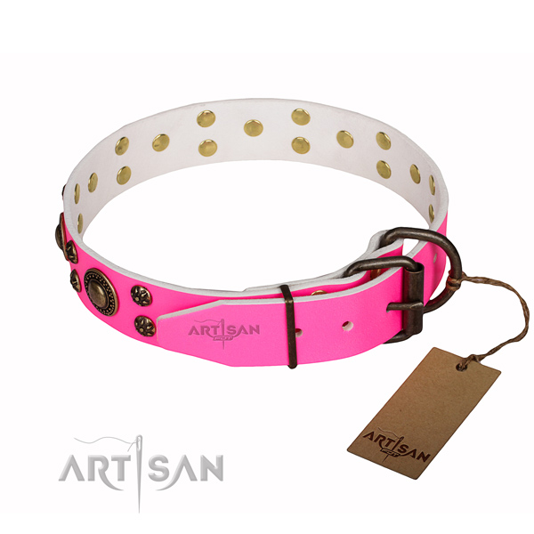 Stylish walking decorated dog collar of reliable full grain natural leather