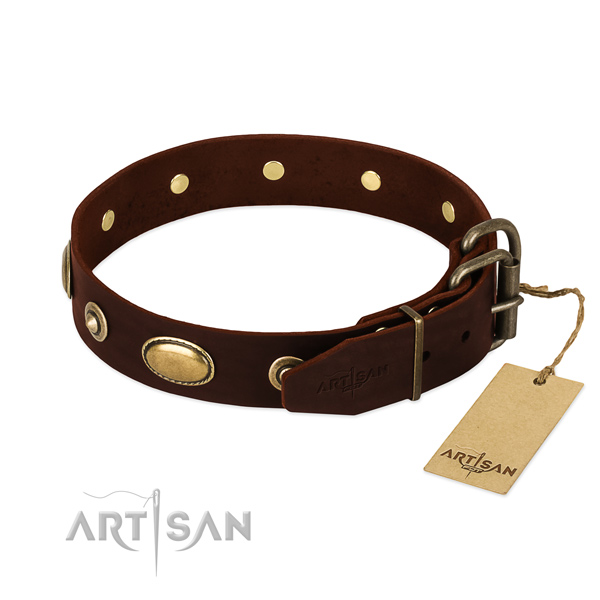 Corrosion proof decorations on full grain leather dog collar for your dog