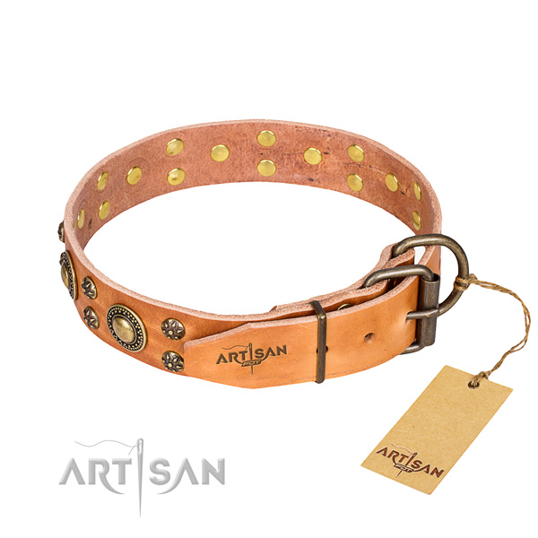 Easy wearing studded dog collar of durable full grain natural leather