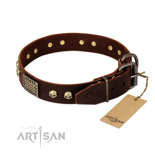 Reliable fittings on daily use dog collar