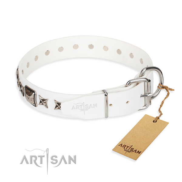 Strong studded dog collar of full grain leather