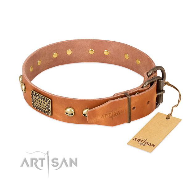 Durable adornments on comfy wearing dog collar