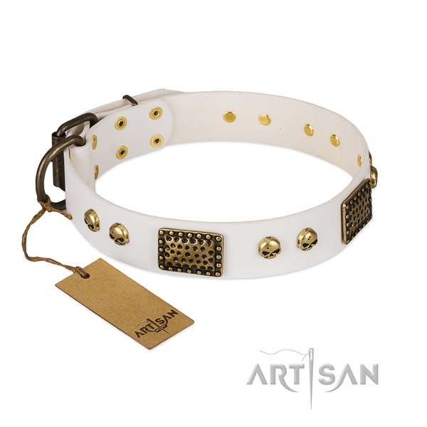 Reliable embellishments on easy wearing dog collar