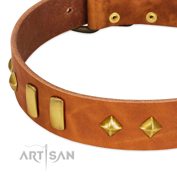 Everyday use full grain genuine leather dog collar with significant decorations