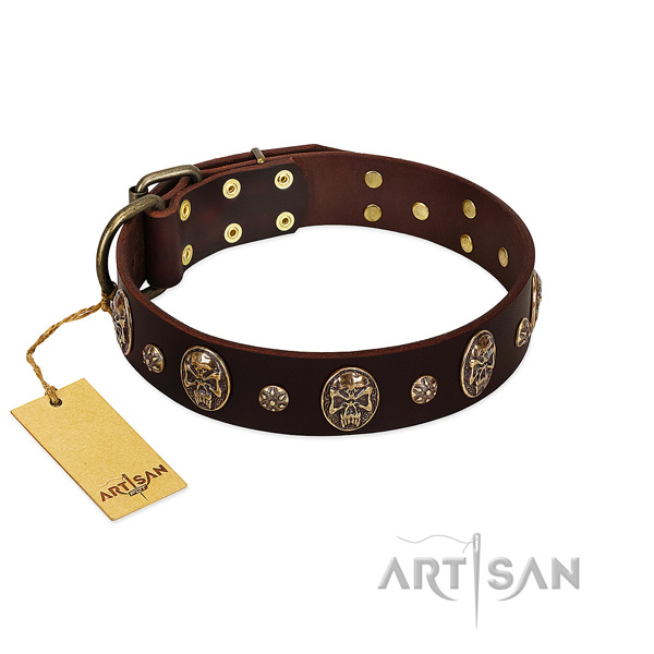 Decorated leather collar for your pet
