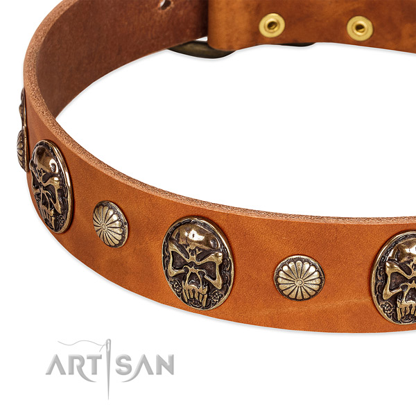 Rust resistant traditional buckle on full grain genuine leather dog collar for your canine
