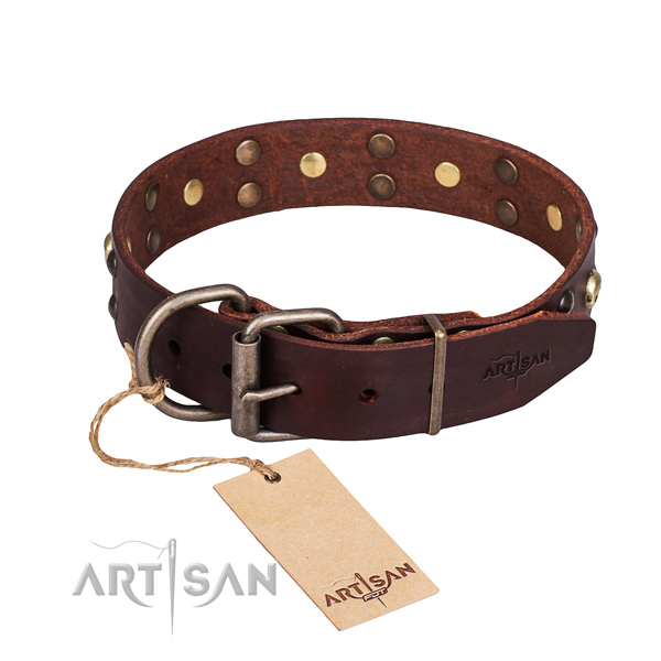 Walking studded dog collar of durable full grain natural leather