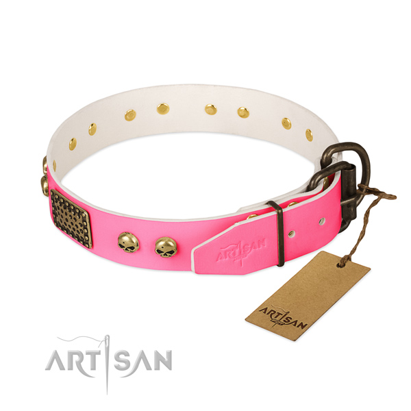 Rust-proof D-ring on daily walking dog collar