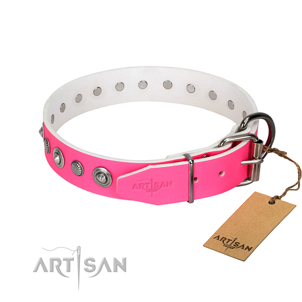 Finest quality natural leather dog collar with inimitable studs