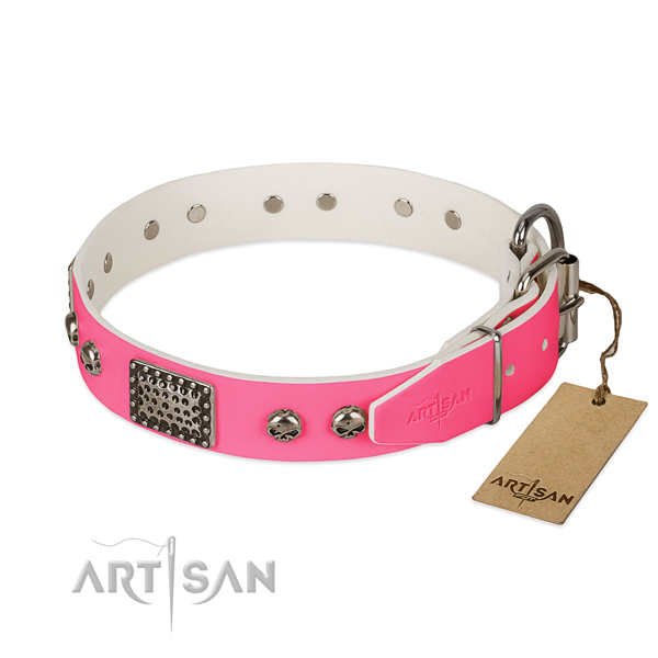 Rust resistant traditional buckle on easy wearing dog collar