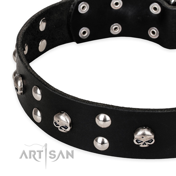 Walking adorned dog collar of strong natural leather