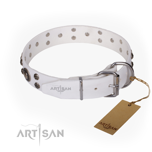 Daily walking decorated dog collar of finest quality full grain genuine leather