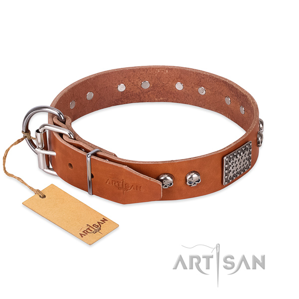 Corrosion resistant decorations on stylish walking dog collar