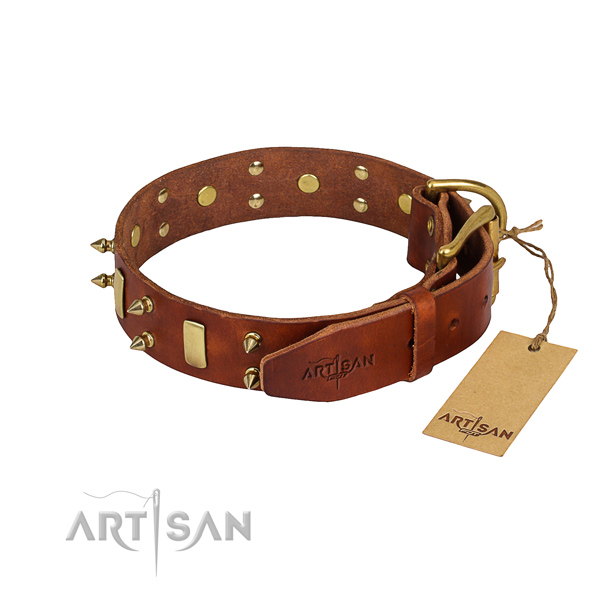 Daily use decorated dog collar of reliable natural leather