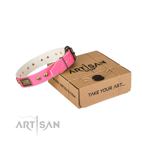 Strong fittings on dog collar for comfortable wearing
