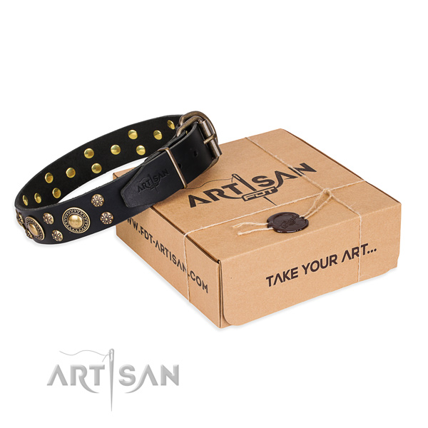 Comfy wearing dog collar of durable genuine leather with adornments