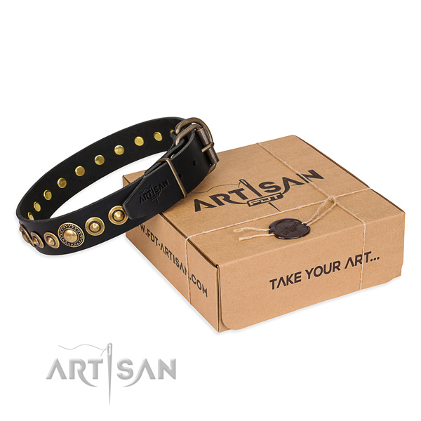 Strong full grain leather dog collar crafted for everyday walking