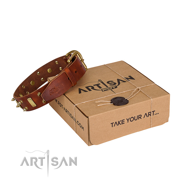 Easy wearing dog collar of durable full grain leather with decorations