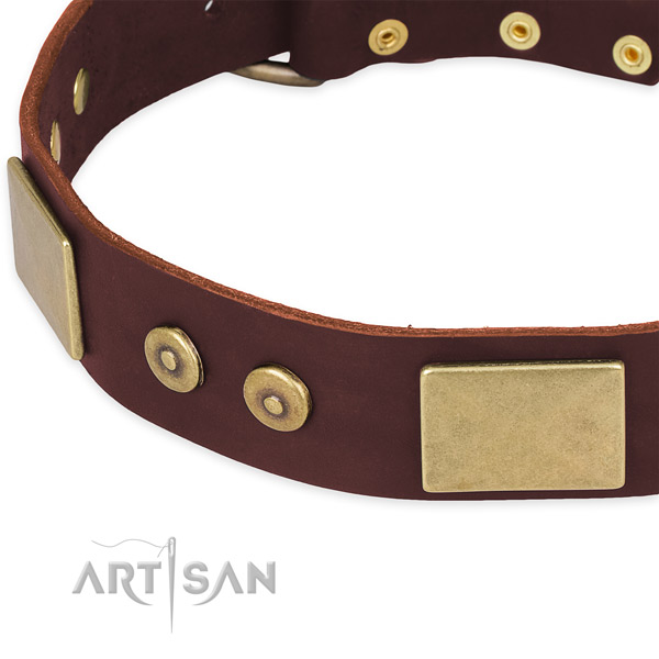 Genuine leather dog collar with decorations for comfy wearing