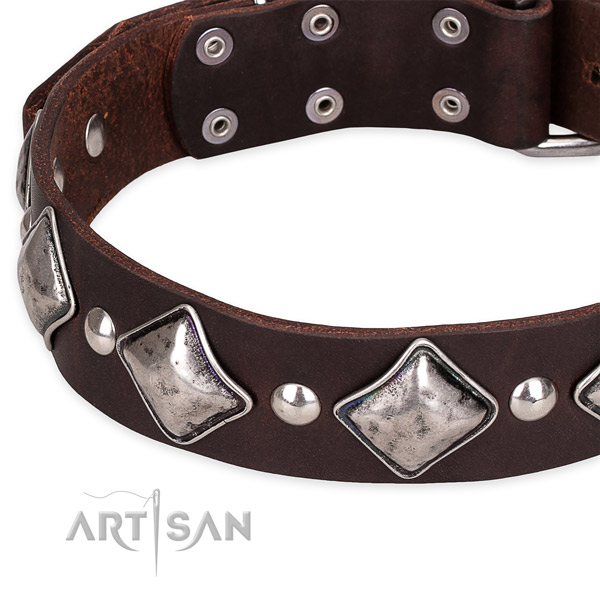 Walking decorated dog collar of top quality full grain natural leather