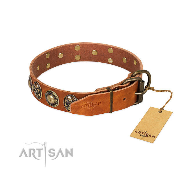 Reliable traditional buckle on everyday walking dog collar