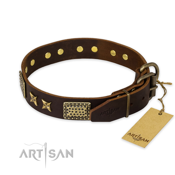 Corrosion resistant buckle on leather collar for your beautiful four-legged friend