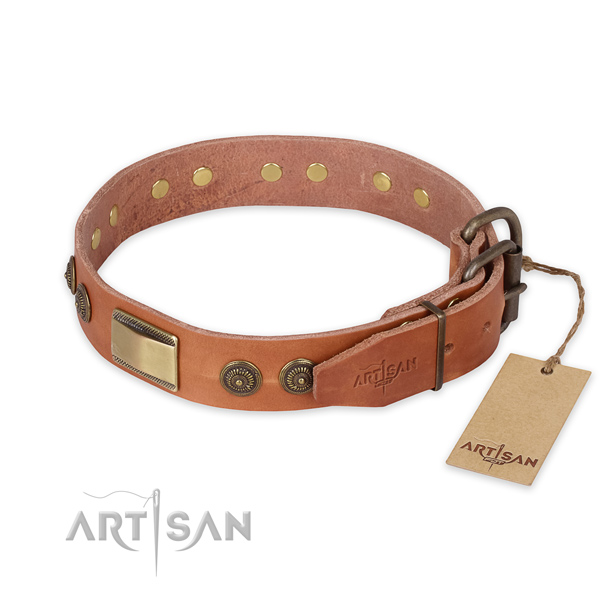 Corrosion proof D-ring on natural genuine leather collar for everyday walking your four-legged friend