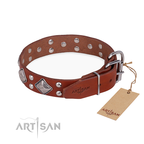 Full grain genuine leather dog collar with exceptional corrosion resistant adornments