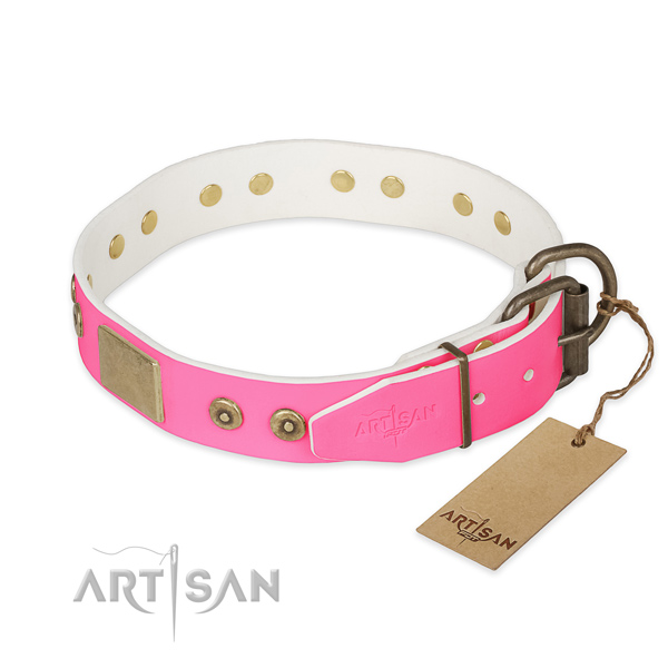 Corrosion resistant buckle on easy wearing dog collar