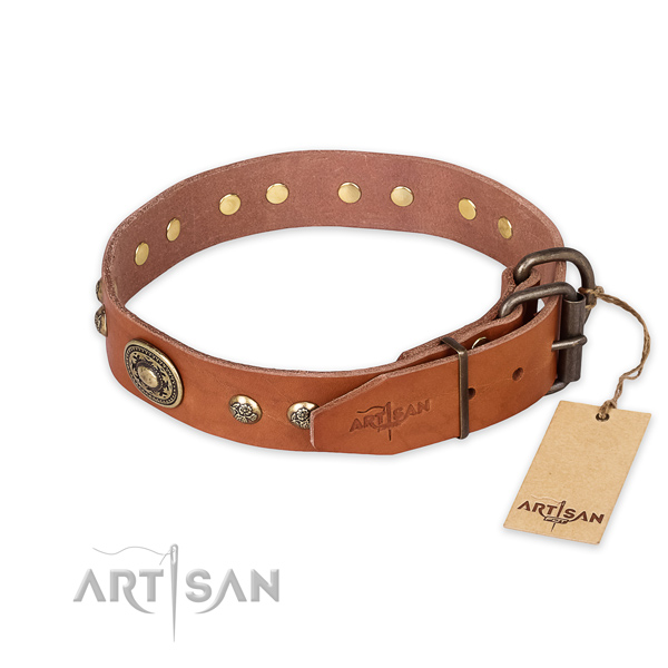 Durable fittings on full grain leather collar for everyday walking your doggie
