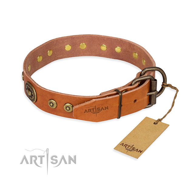 Leather dog collar made of high quality material with strong embellishments