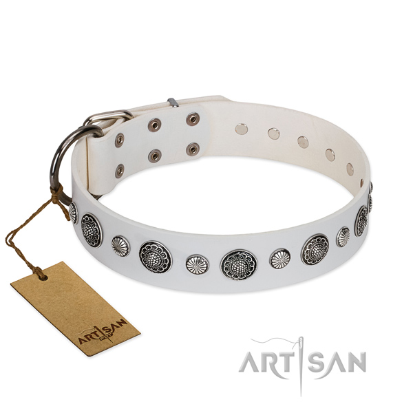 Top notch genuine leather dog collar with corrosion proof hardware