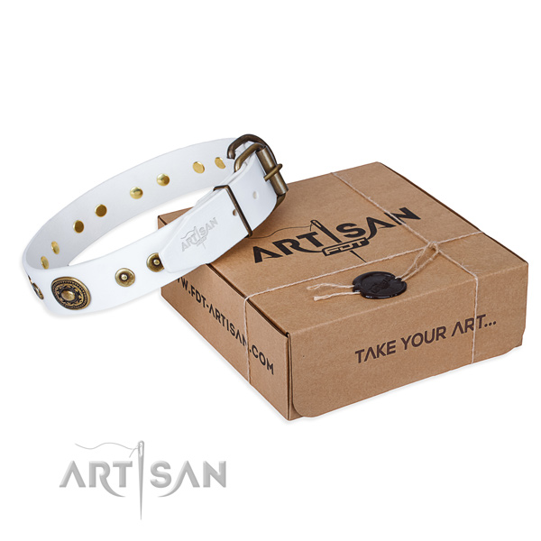 Full grain genuine leather dog collar made of soft material with strong fittings