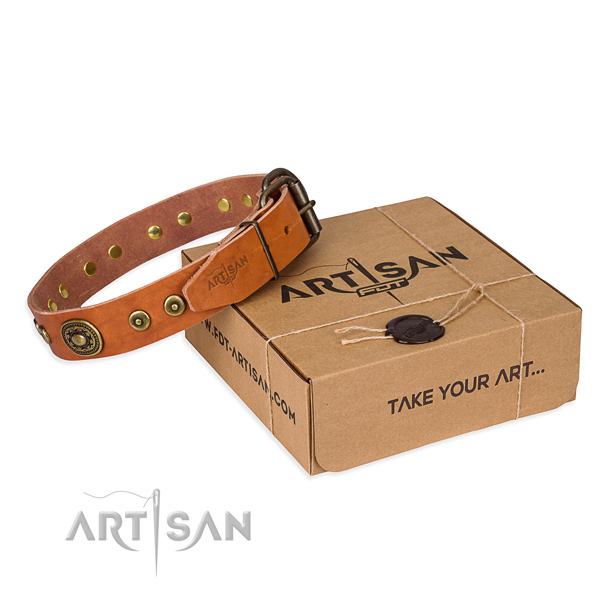 Full grain genuine leather dog collar made of high quality material with rust resistant fittings