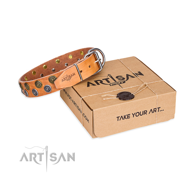Easy wearing dog collar of durable leather with embellishments