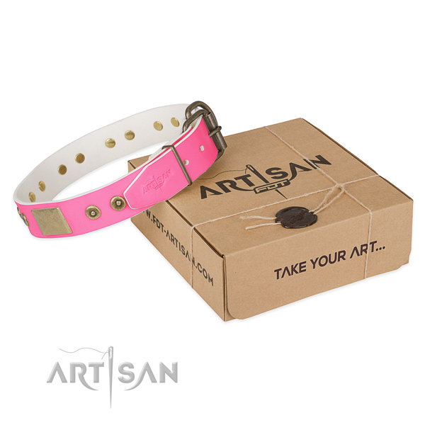 Rust resistant decorations on dog collar for walking