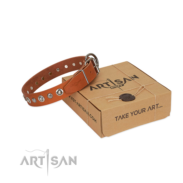 Fine quality full grain natural leather dog collar with stylish design adornments