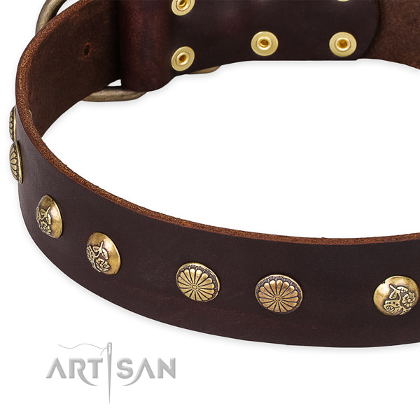 Natural genuine leather collar with corrosion resistant buckle for your beautiful four-legged friend