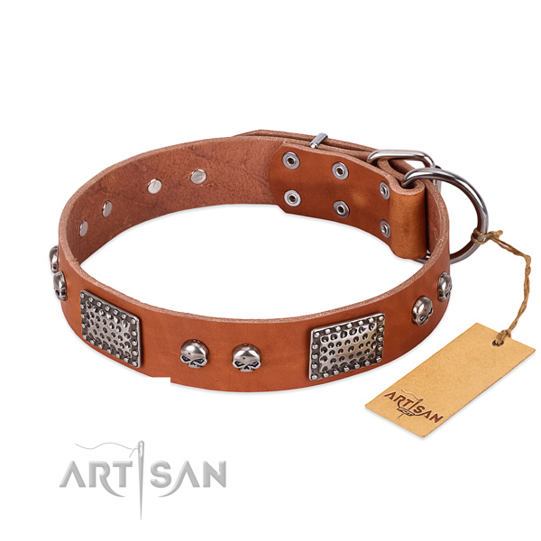 Adjustable full grain genuine leather dog collar for basic training your four-legged friend