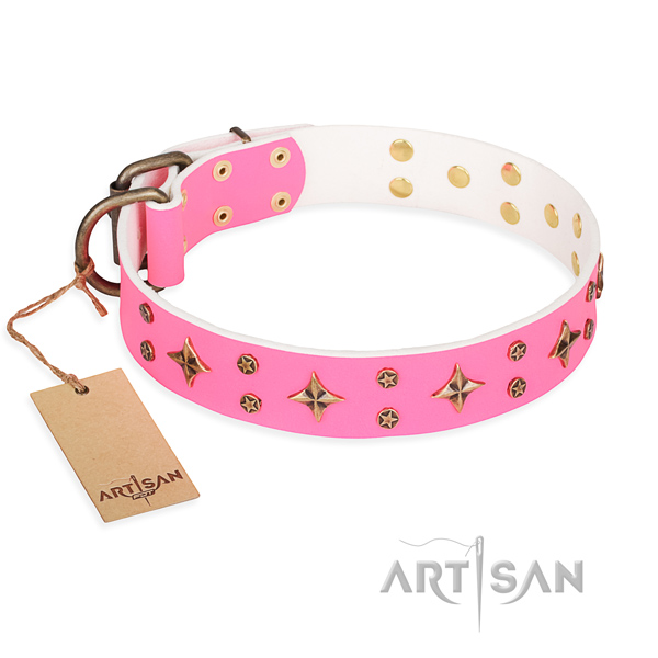 Comfortable wearing dog collar of finest quality full grain natural leather with studs