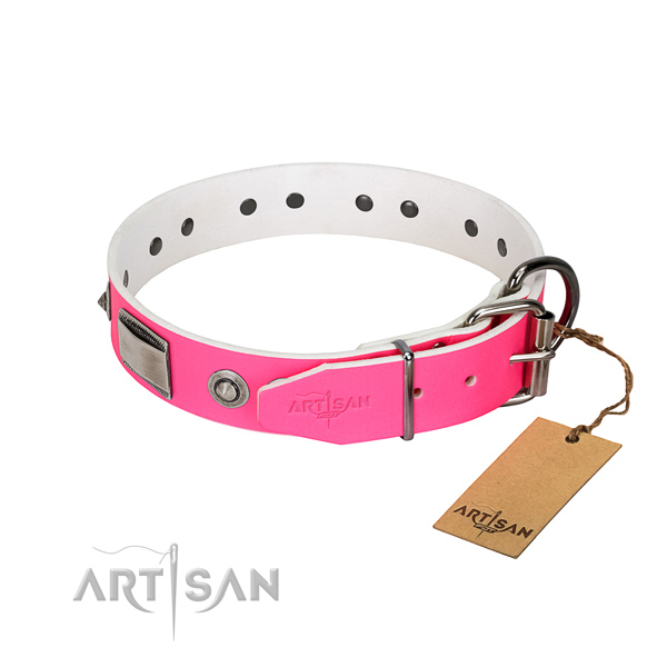Unique dog collar of natural leather with decorations