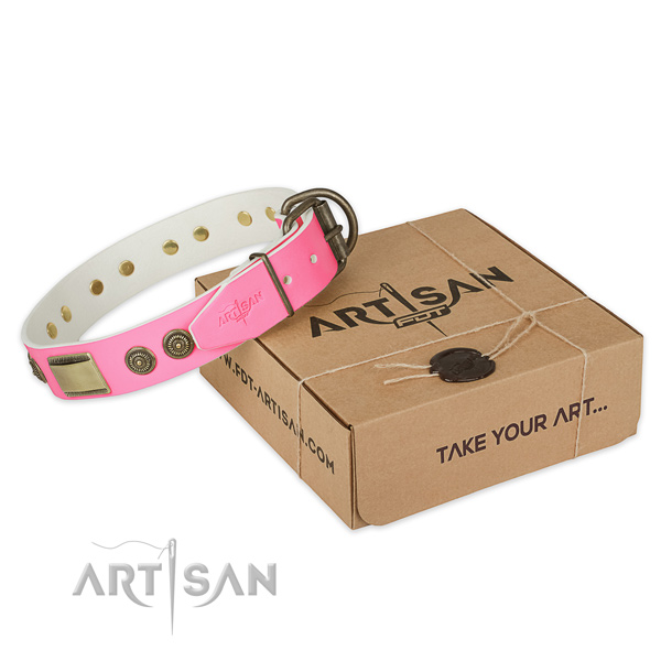Reliable adornments on dog collar for daily use