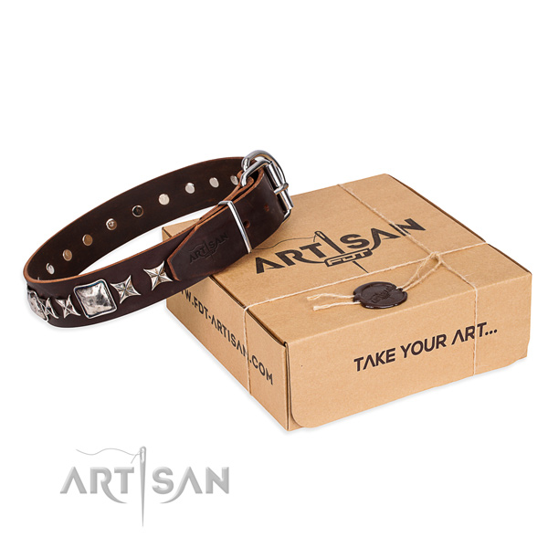 Daily use dog collar of high quality leather with adornments
