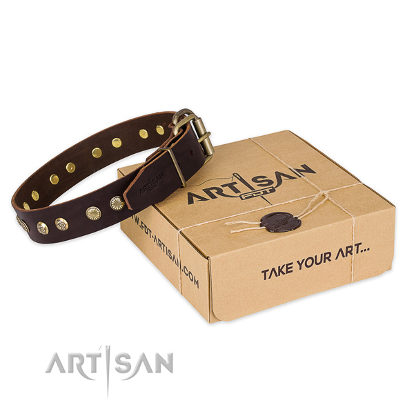 Rust-proof traditional buckle on full grain genuine leather collar for your stylish dog