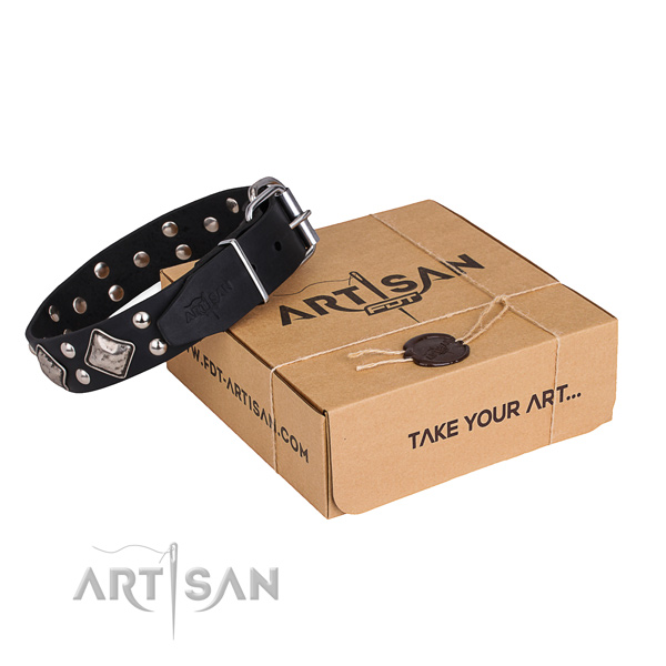 Stylish walking dog collar with Top notch rust-proof adornments