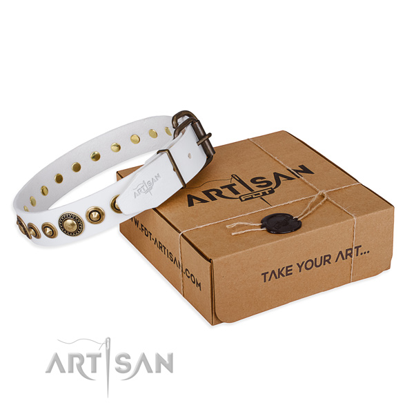 Durable full grain natural leather dog collar handmade for fancy walking
