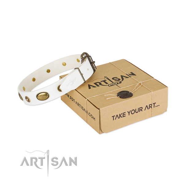 Convenient full grain natural leather collar for your stylish canine