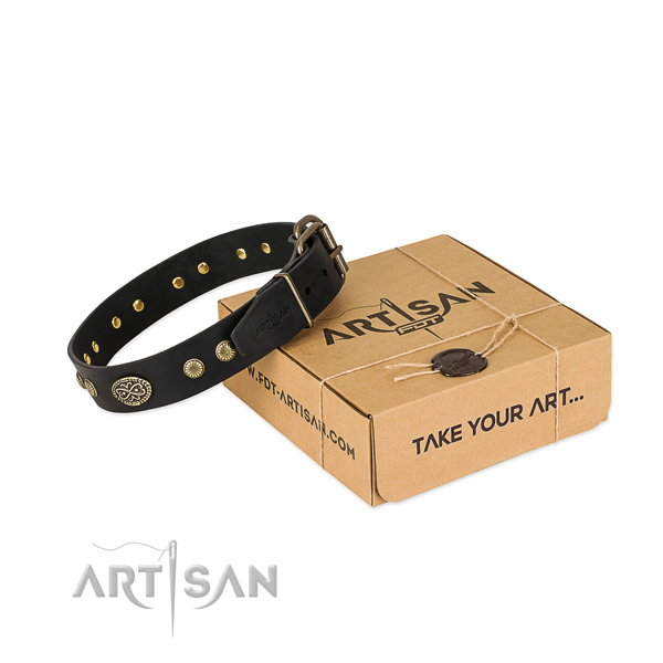 Strong decorations on leather dog collar for your pet