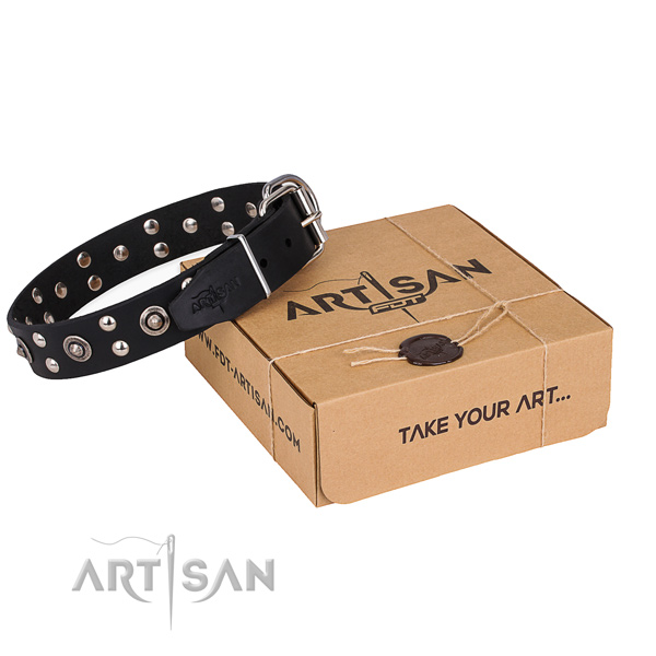 Daily walking dog collar with Fashionable rust-proof embellishments