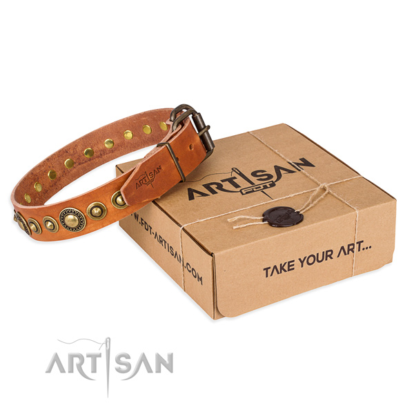 Soft to touch full grain leather dog collar made for everyday use
